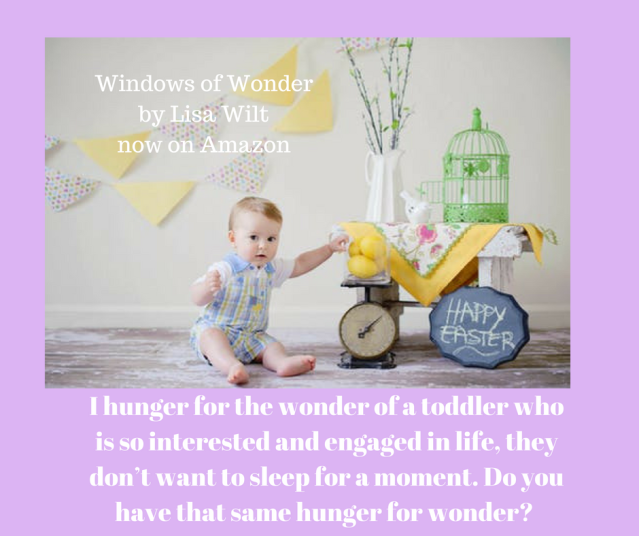 I hunger for the wonder of a toddler who is so interested and engaged in life, they don_t want to sleep for a moment. Do you have that same hunger for wonder?