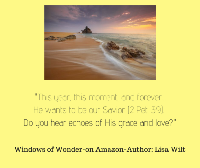 This year, this moment, and forever…He wants to be our Savior (2 Pet. 3_9). Do you hear echoes of His grace and love? Perhaps this is why He gave us two ears, so we could hear all His