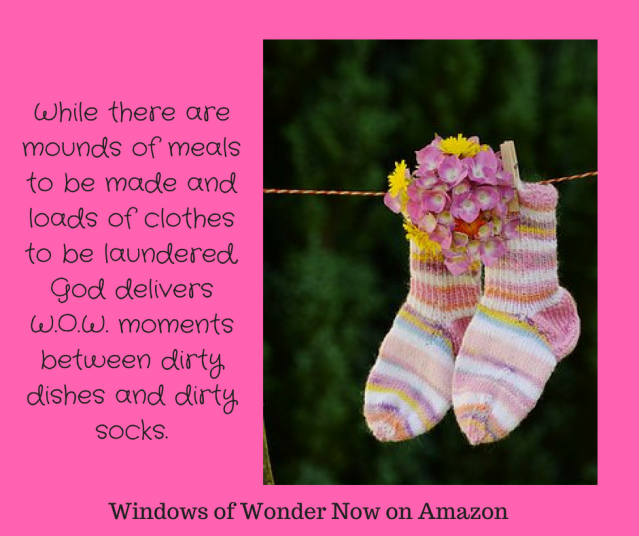While there are mounds of meals to be made and loads of clothes to be laundered, God delivers W.O.W. moments between dirty dishes and dirty socks.-2