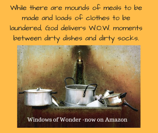 While there are mounds of meals to be made and loads of clothes to be laundered, God delivers W.O.W. moments between dirty dishes and dirty socks.-3