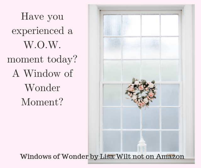 Have you experienced a W.O.W. moment today?A Window of Wonder Moment?-2